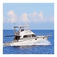 Fishing Yacht - Bertram 38 - Cap. 8 Pax