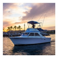 Fishing Yacht - Uniflite 28 - Cap. 4 Pax